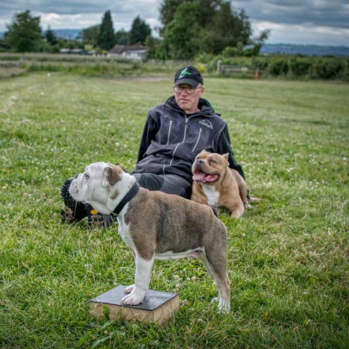 Dog Marker training with Tavis, Chunk and Buddy