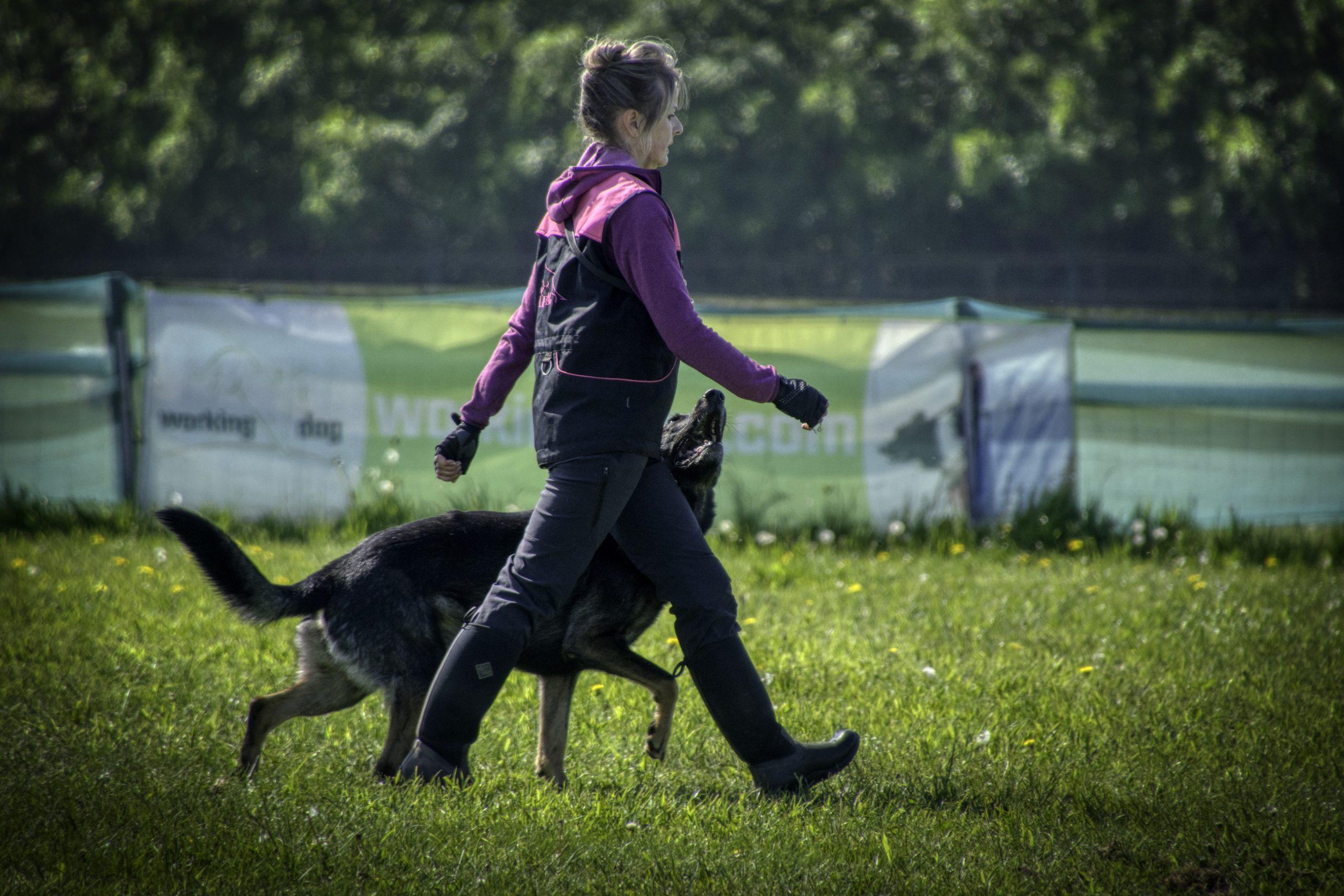 Kez White and her GSD Solar at Vislor Dog Sport Training