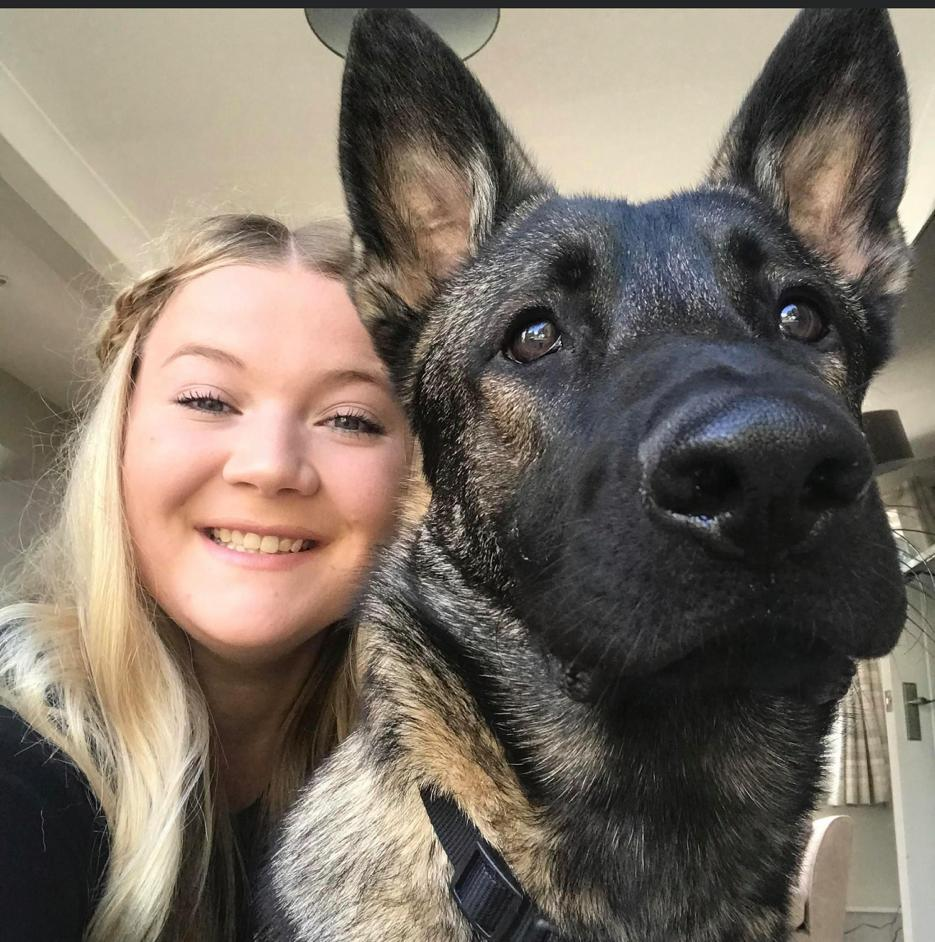 Rachel and Ruben GSD 1-1 dog training
